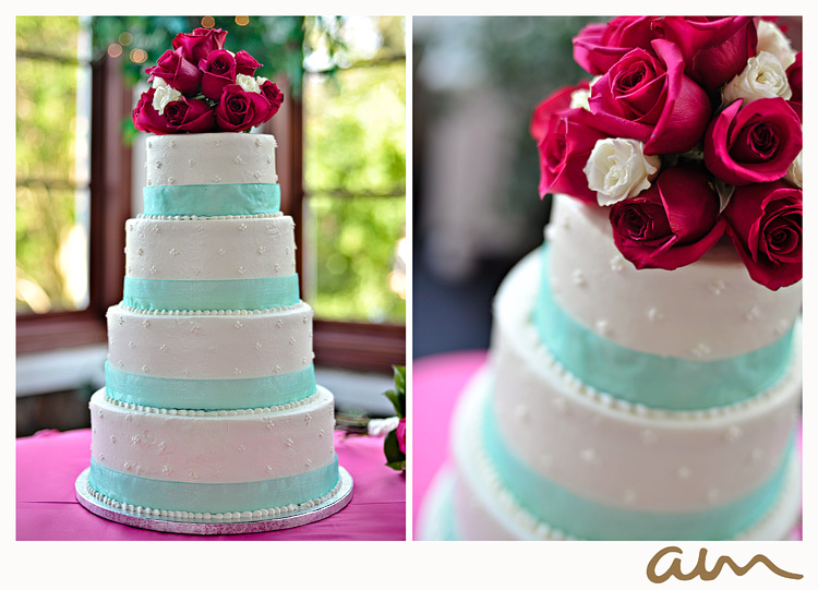 Tiffany Blue Cake Design : Modern Zebra  Blog Archive   Tiffany Blue Ribbon Cake with ...